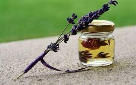 darshanatura-aromaterapia
