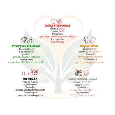 darshanatura-emozioni-organi-hiw
