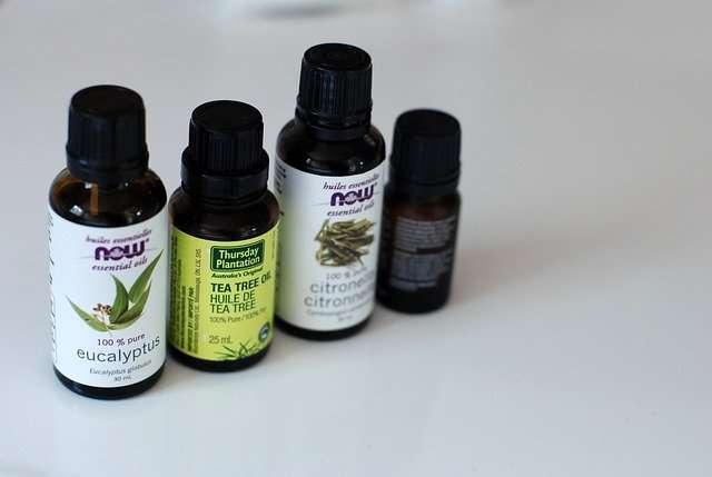 zanzare-oli-trattamenti-eucalipto-oli aromatici-benessere-tea tree oil-darshanatura