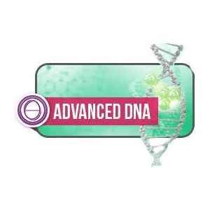 DarshaNatura Corso ThetaHealing DNA2 Avanzato