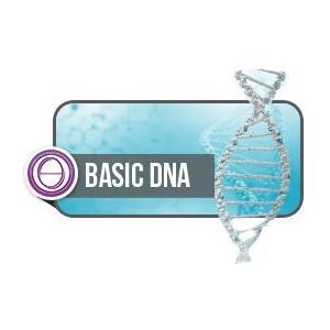 DarshaNatura Corso ThetaHealing DNA2 Base