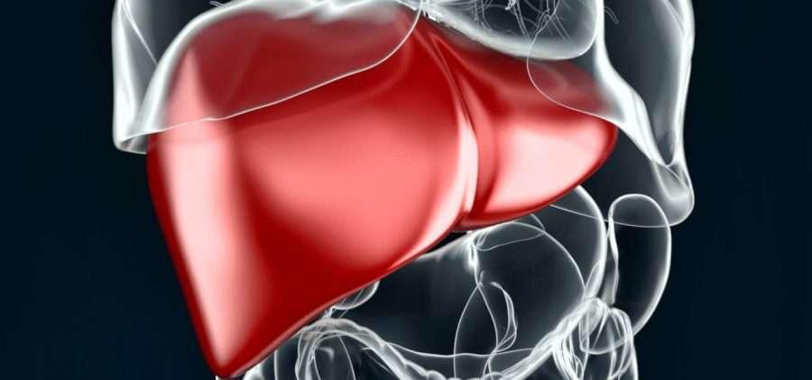 Darshanatura - Energia e Medicina Vibrazionale: Cosa è l'energia e su cosa si basa la Medicina Vibrazionale