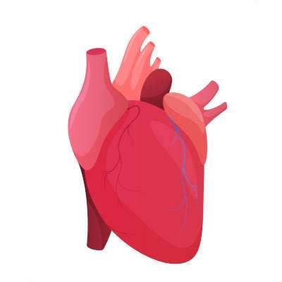 darshanatura-cuore-ansia-e-medicina-cinese-hiw-01